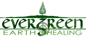 Evergreen Earth Healing initial logo design concept #3